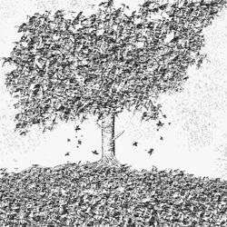 Tree by Giovanni-Palma