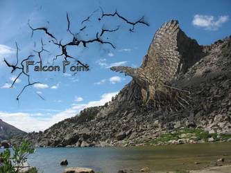 Shaman: falcon point by pixiechick110