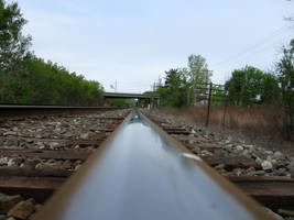 Tracks by tolcott