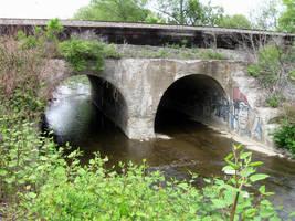 Twin bridge by tolcott