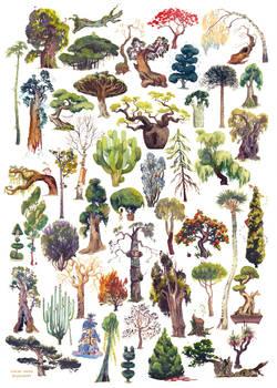 50 Trees
