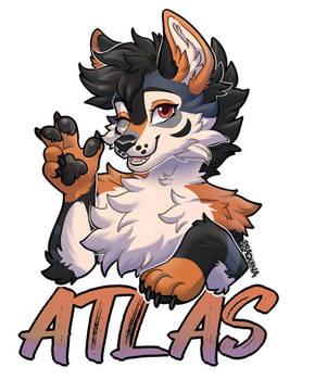 [C] ATLAS
