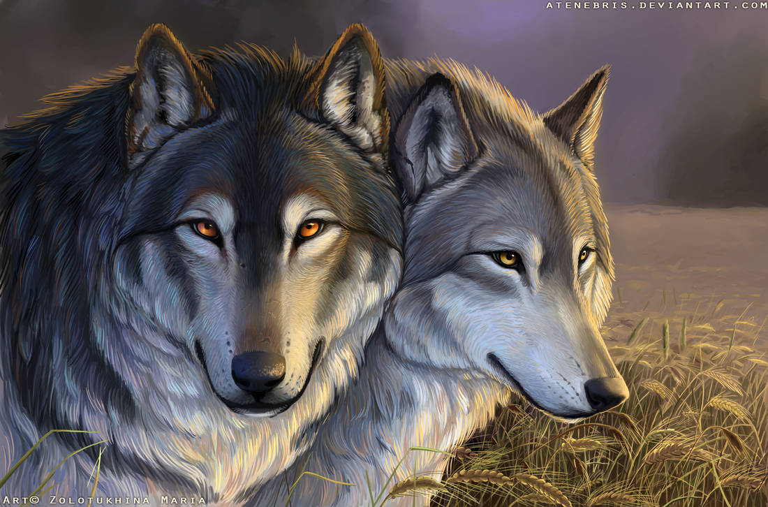 Wolves by Atenebris