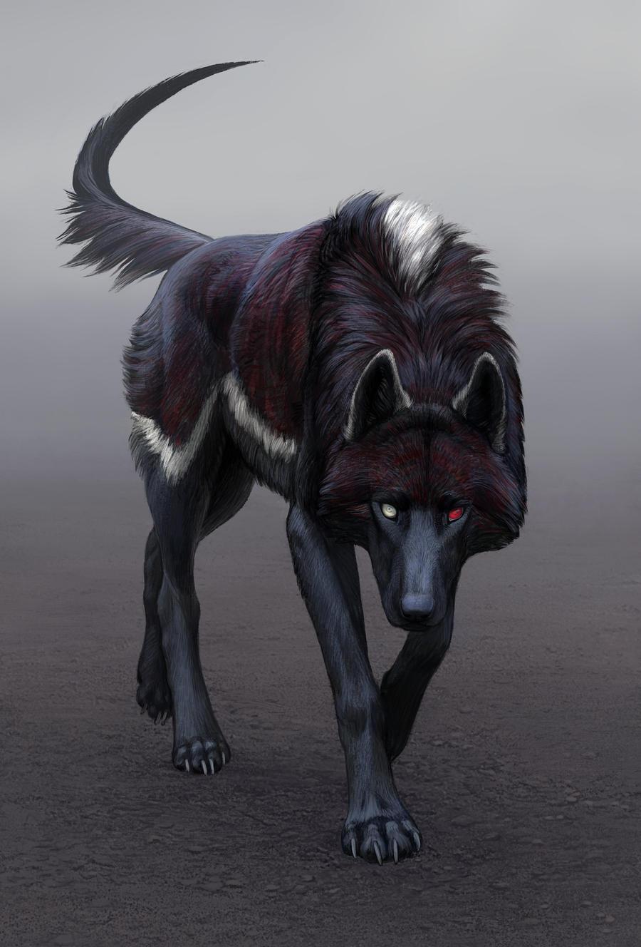 Чёрная фурри волчица 19 фотография
