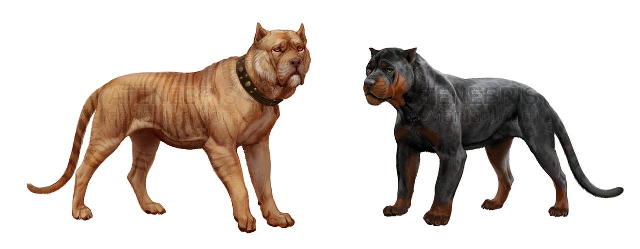 ADOPTABLES DogCat hybrids by Atenebris