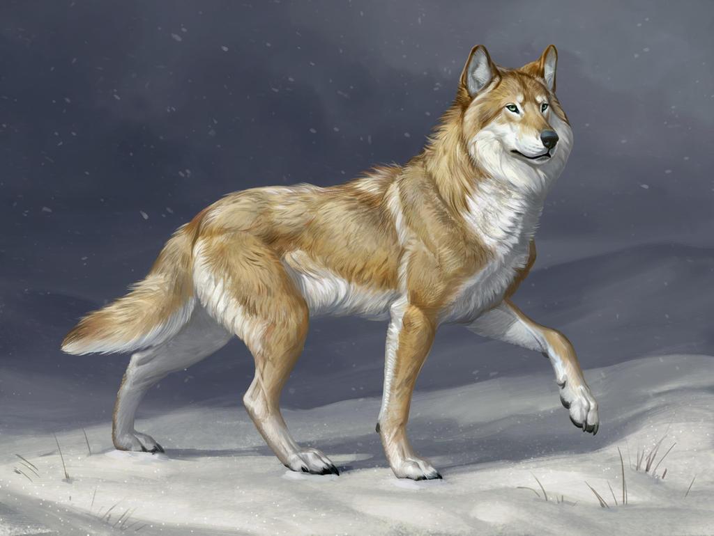 Plainswalker by Atenebris