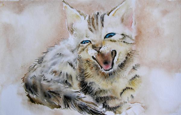 Kitten by Vincik