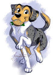 Filou the Aussie Beagle Mix by furrytale-ART