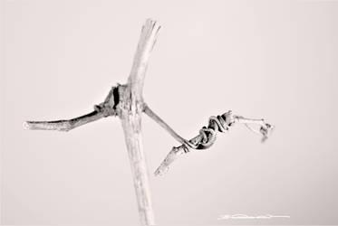 Ballet Two by jon-bibire