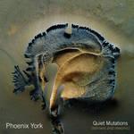 Jon Bibire Artcover-Phoenix York Album