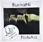 Jon Bibire Artcover - Another Bumani Album