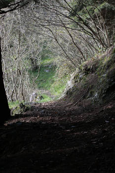 Path for the Middle Earth