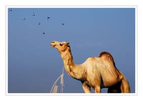 Arabian Era by HaMeDicaL
