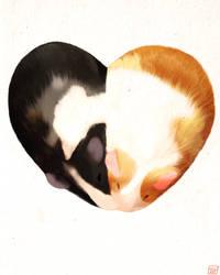 Guinea Pig Heart by ninjaink