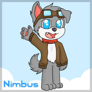 Nimbus, the Pilot Doge