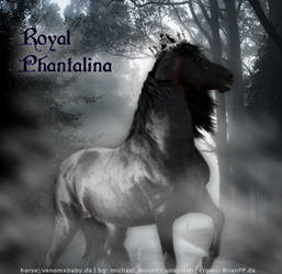 Royal Phantalina by Merry-130282