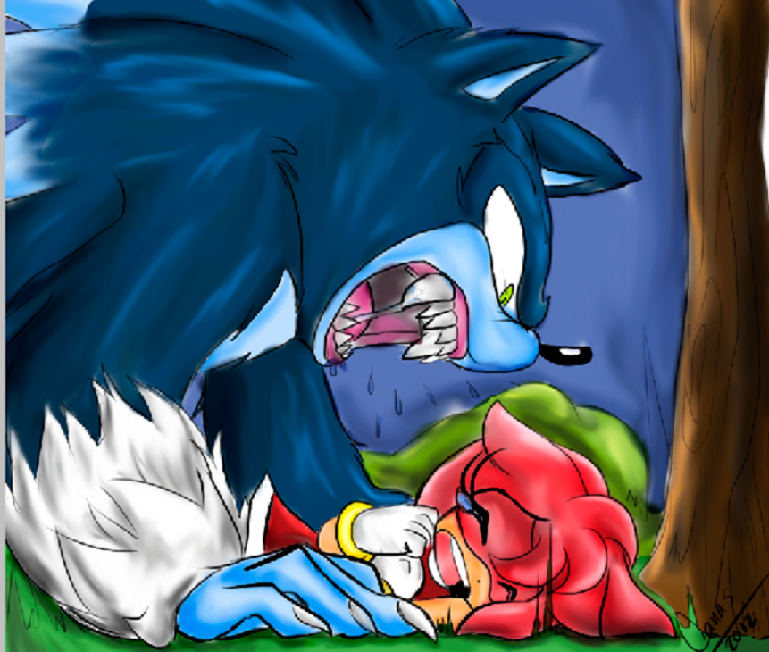 Werehog: Roaring Color by Moonlightjoy on DeviantArt