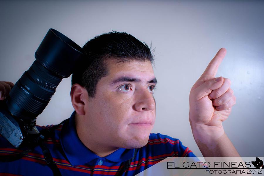 elgatofineas's Profile Picture