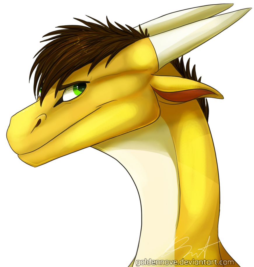 hiryu_by_goldennove-d85dgwz.png