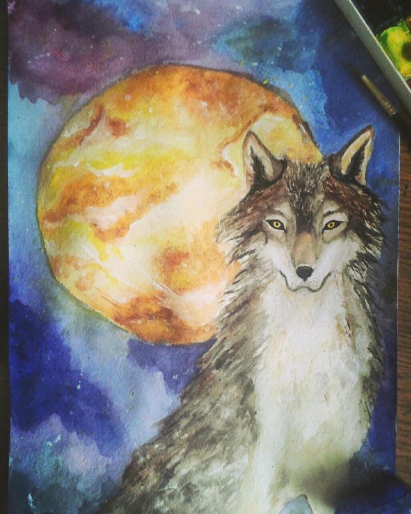 Night gaze by Moon-Mascot