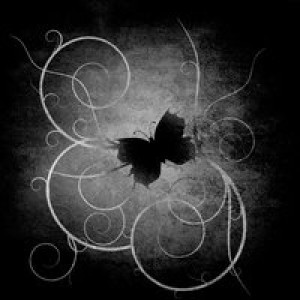 The-Gothic-Butterfly's Profile Picture