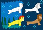 SRKF Sea-Lions Swim Through Cave
