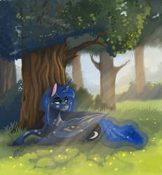 Peace and quiet by Lionylioness