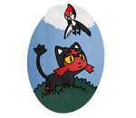 Pokemon Litten And Pikipek Fan Art by HoshigumoChan