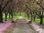 Romantic Hideaway 2