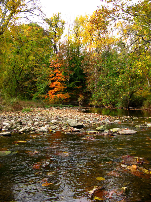Autumn Stream 2 by bean-stock