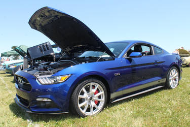 Blue Stang by SwiftysGarage