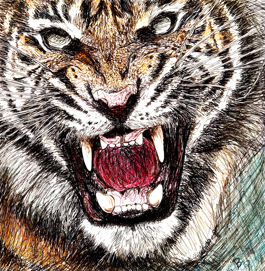 Angry Tiger by daevilmagiciano on DeviantArt