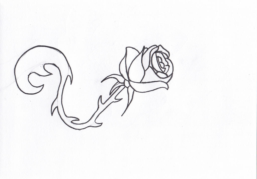 Tattoo Line Drawing Software : Simple rose tattoo design by ampgraphicart on deviantart