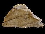 stone cutout pre-cut by wonderlandstockX (1)