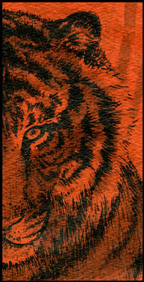 tiger in india ink 2