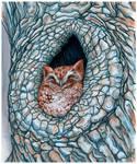 Little Owlette