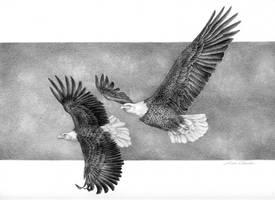 Soaring Eagles by LisaCrowBurke