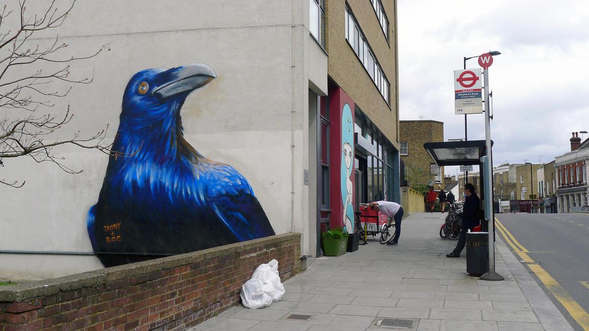 Hackney Crow by WhoAm-Irony