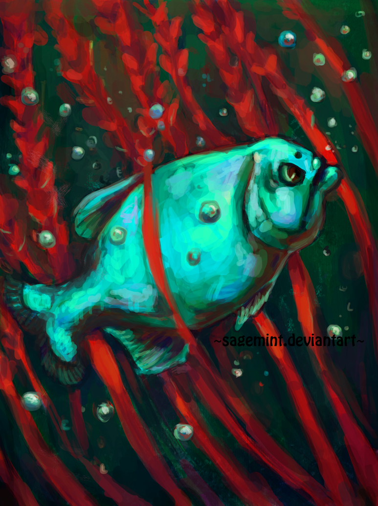 Piranha by SageMint