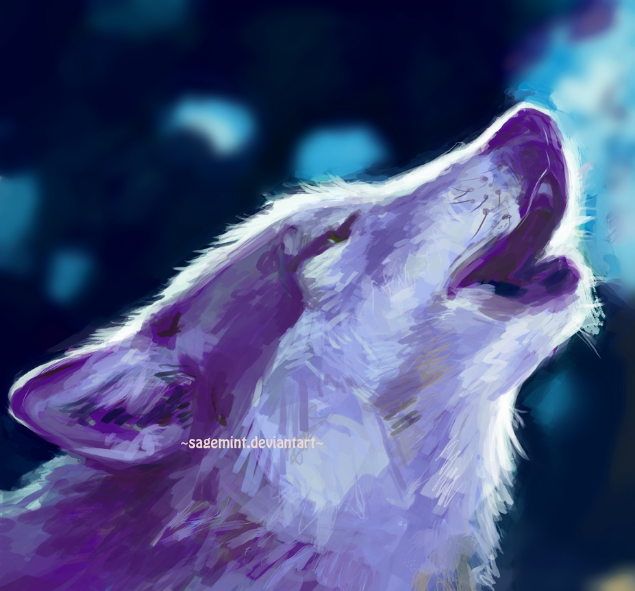 Wolf study by SageMint