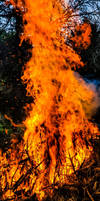 A All Consuming Fire