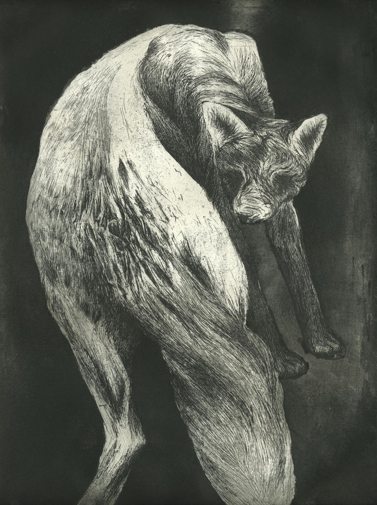 Bark by Catharsisky