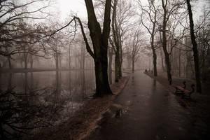 Autumn Alleys by drkshp