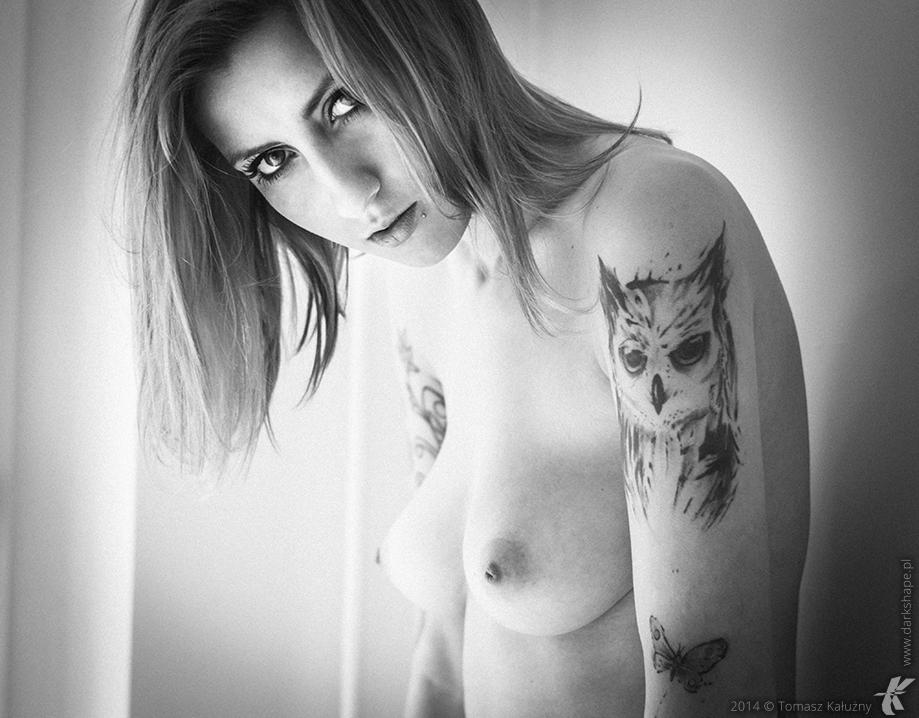 Owl by drkshp
