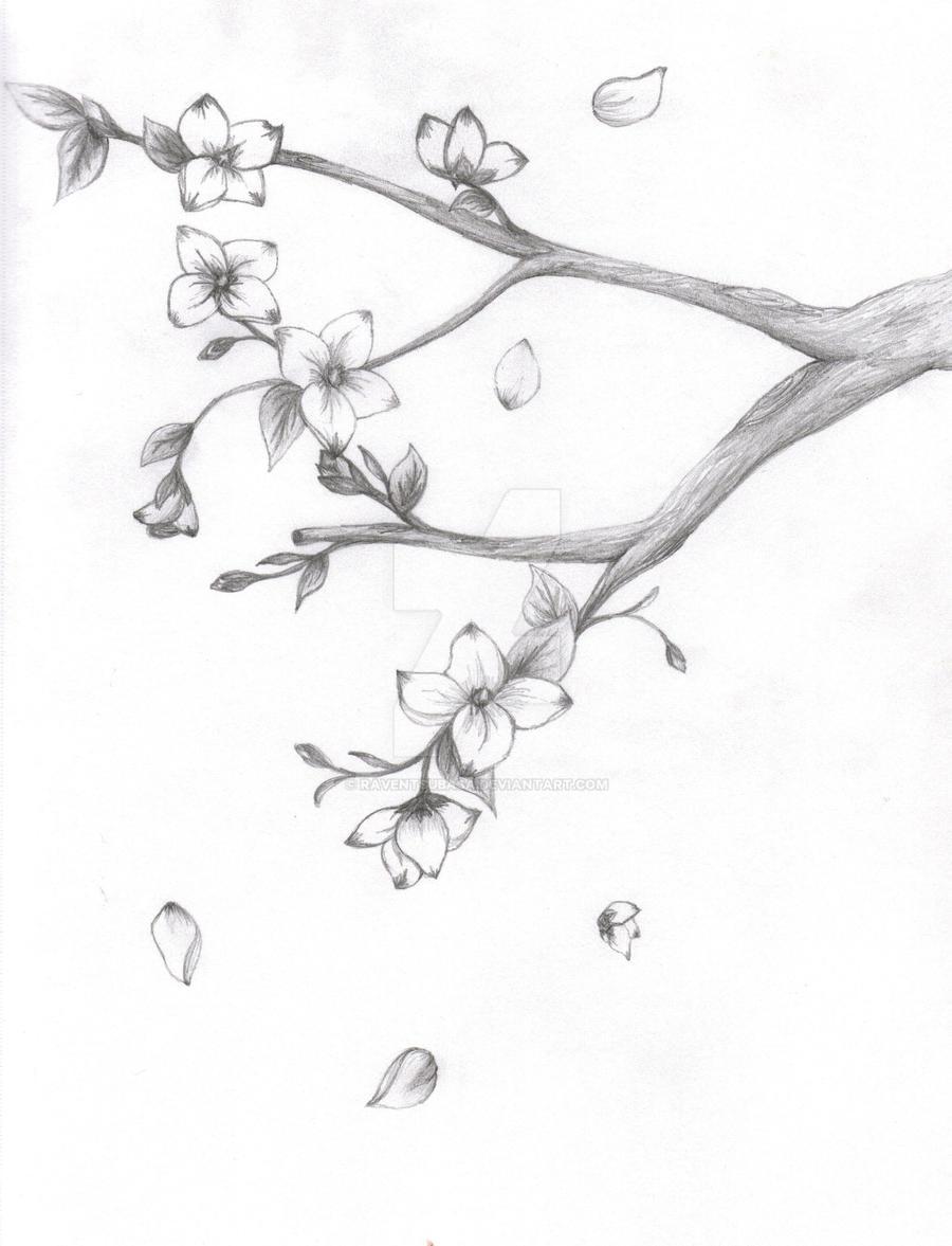 japanese sakura blossom by raventsubasa japanese sakura blossom by raventsubasa