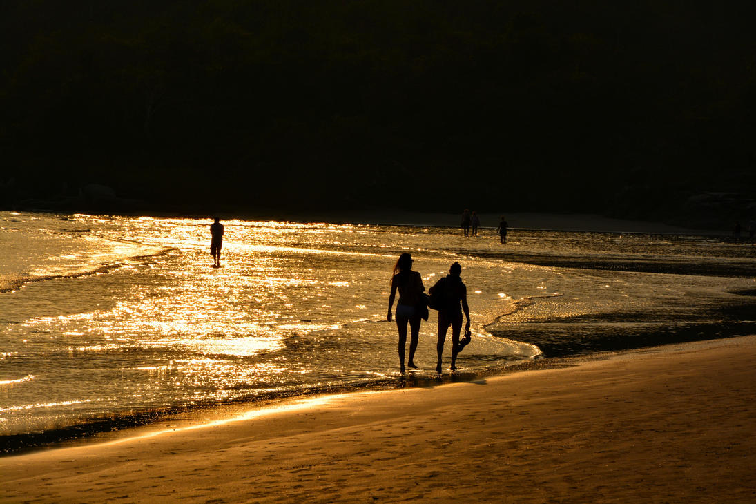 Sea of Gold - Goa India by siddharth-singh
