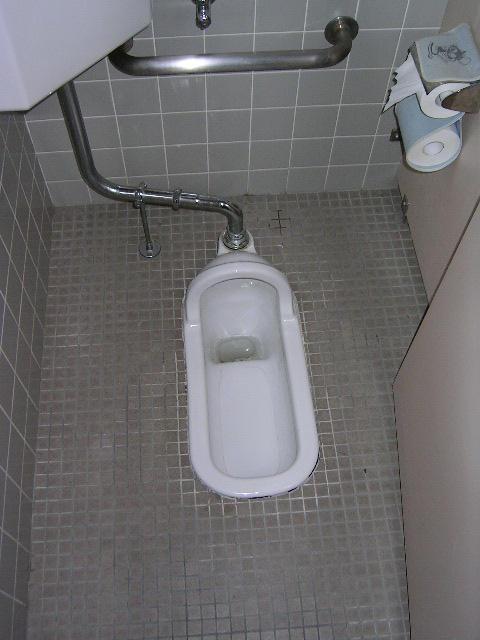 http://fc04.deviantart.com/fs4/i/2004/211/8/d/Japanese_Style_Toilet.jpg