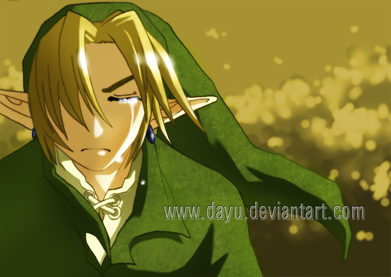 Zelda: Link, a Tired Hero by Dayu