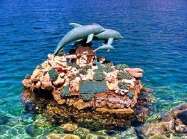 Delfinakia - Greece by gzacharioudakis