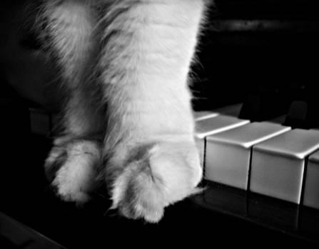 Sheoldred's sonata.